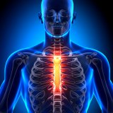 Technology In Brief—NASA tech could aid bone conditions; contracts awarded