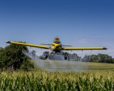 Pesticides helps with crop production, but there's a downside.