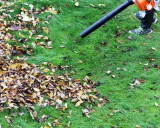 Gas-powered leaf blowers clean the lawn but pollute the air.