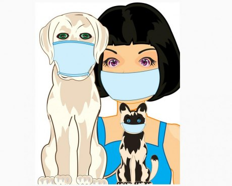Worry about getting the virus from other humans -- not pets.